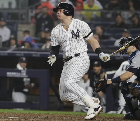 Yankees Defeat Rays