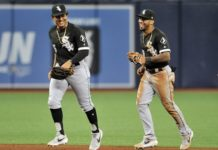 Rays Fall to White Sox
