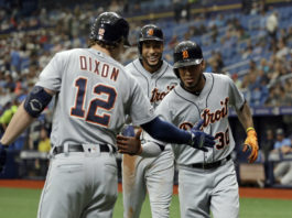 Rays Fall To Tigers